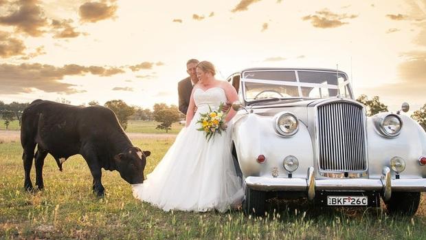Đang chụp ảnh cưới bỗng có trẻ trâu không mời nhảy vào phá đám, chú rể phải ra tay dọa kẻ phá hoại bỏ chạy tóe khói - Ảnh 4.