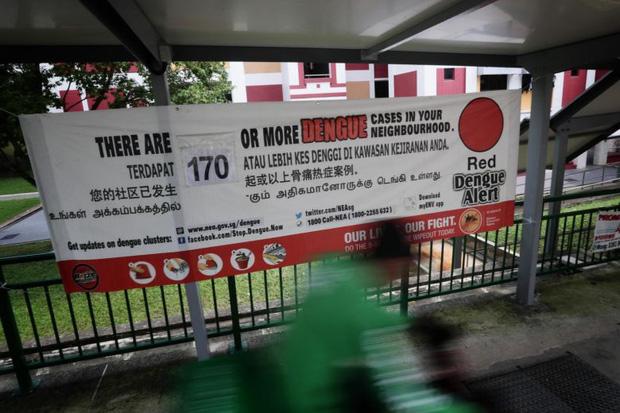 Đứng trước cơn sóng thần bệnh nhân Covid-19, Singapore đã ứng phó ra sao để duy trì tỷ lệ tử vong thấp? - Ảnh 5.