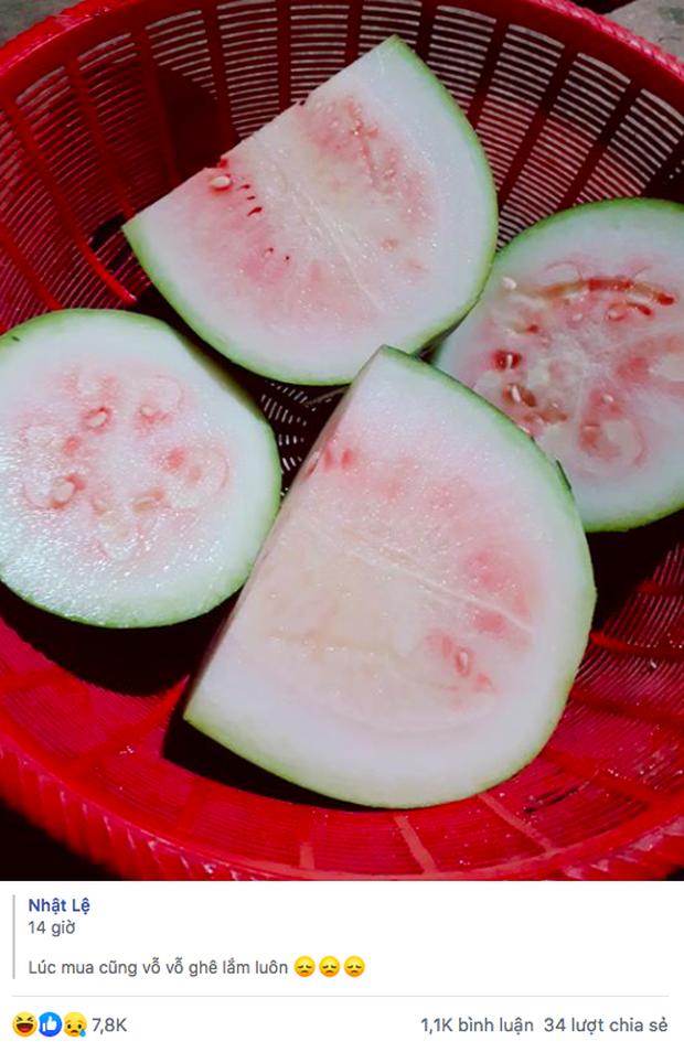 Dân mạng cười ngất khi thấy cô gái mua phải quả dưa hấu đểu có ruột trắng muốt, nhưng tất cả đều đã nhầm to? - Ảnh 1.