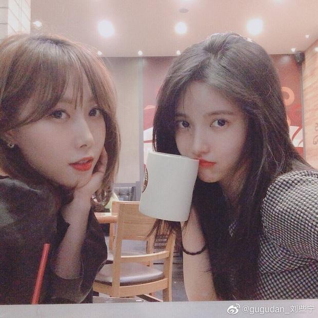 2 nữ idol Kpop trong 2 show Trung đang hot: Cùng đến từ girlgroup vô danh nhưng người gây sốt vì tài sắc, người lại mờ nhạt chẳng ai biết mặt nhớ tên - Ảnh 18.
