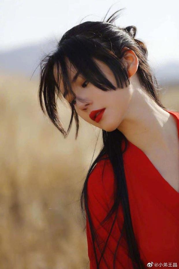 Ỷ Thiên Đồ Long Ký bản 2020 gây sốc vì phá nát kịch bản của Kim Dung: Trương Vô Kỵ sẽ lên làm vua để trả thù Thành Côn? - Ảnh 3.