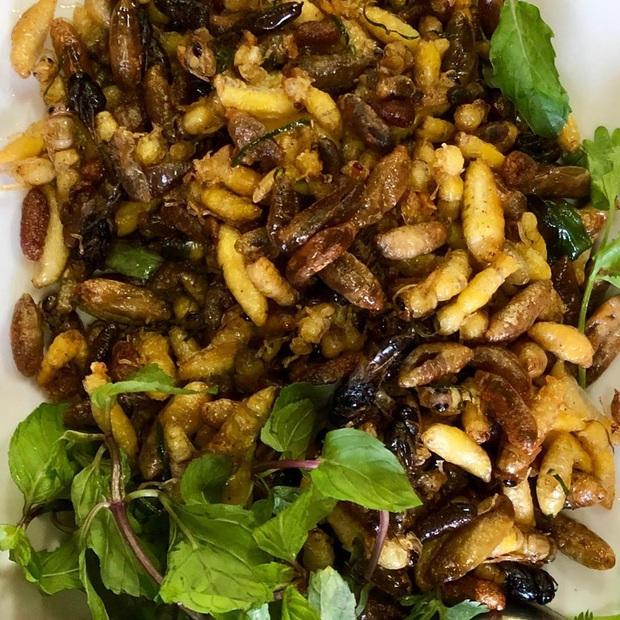Thấy người miền Tây bắt nhộng ong để ăn mà tá hoả, tìm hiểu mới biết đây là món đặc sản ngon nức tiếng và cực kỳ bổ dưỡng - Ảnh 6.