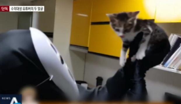 Youtuber nổi tiếng xứ Hàn bị tố bỏ đói, hành hạ động vật tàn nhẫn để câu view khiến cộng đồng mạng phẫn nộ - Ảnh 3.