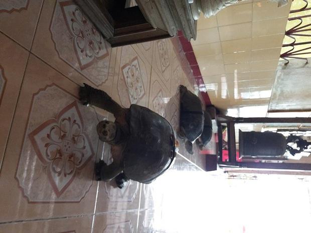 Kỳ lạ cụ rùa hơn trăm tuổi ở miền Tây biết... nghe kinh, ăn chay và giữ cửa - Ảnh 4.