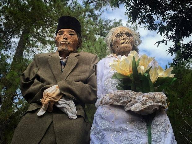 Sống chung và vệ sinh thi thể người chết: Việc làm nghe rùng rợn nhưng là văn hóa người Toraja cùng những lễ tang đắt đỏ thể hiện sự giàu sang - Ảnh 8.