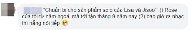 Không thèm chốt ngày comeback, YG bỗng nhiên nói về kế hoạch solo của BLACKPINK: Rosé sẽ có album ra tháng 9, Lisa và Jisoo đang chuẩn bị?  - Ảnh 6.