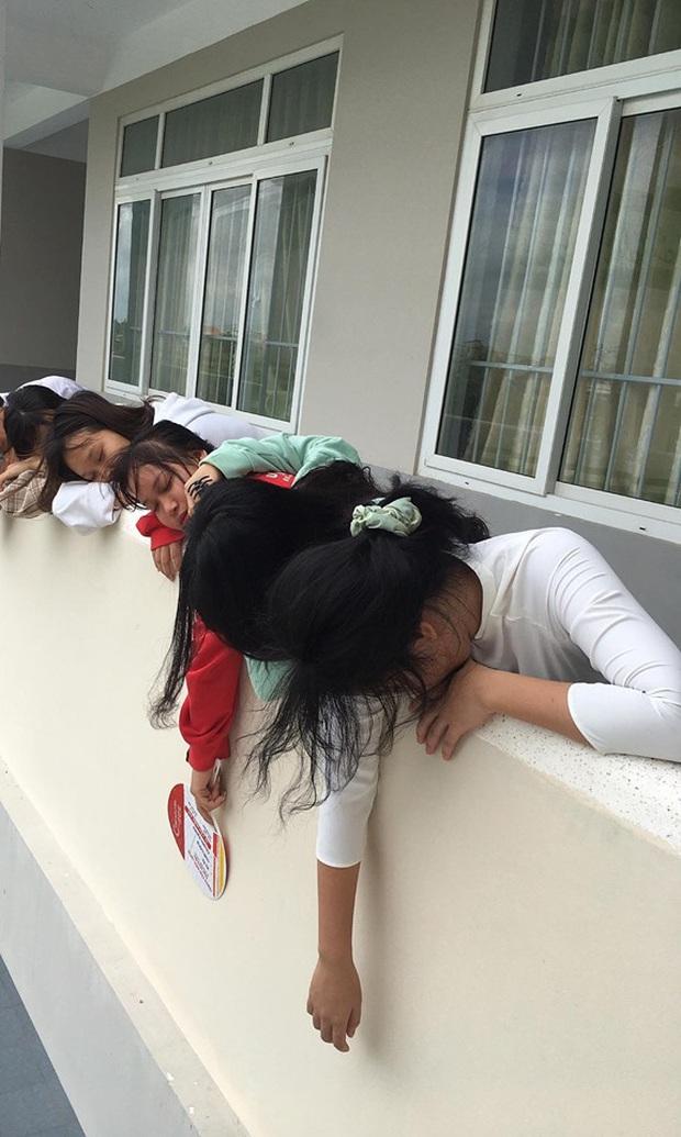 Chết cười với bộ ảnh học trò nằm la liệt khắp cầu thang, lớp học than thở mùa thi cuối kỳ - Ảnh 2.