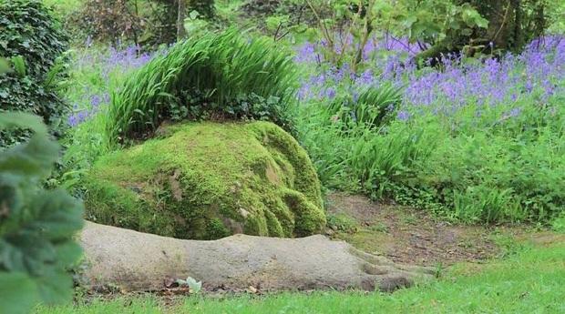 Lạ kỳ bức tượng thiếu nữ nằm ngủ được mẹ thiên nhiên tặng xiêm y thay đổi theo 4 mùa - Ảnh 4.