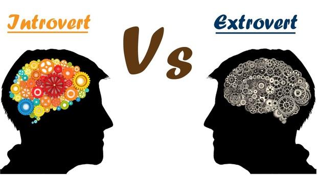 Bên trong não người hướng nội có gì mà khiến họ hay bị hiểu nhầm là nhút nhát, thụ động, ít nói? - Ảnh 1.