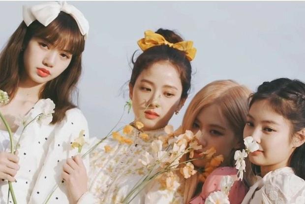 Vừa chốt ngày comeback, BLACKPINK tiếp tục rinh về thành tích mới, trở thành girlgroup Kpop duy nhất sở hữu 4 MV đạt 800 triệu view - Ảnh 3.