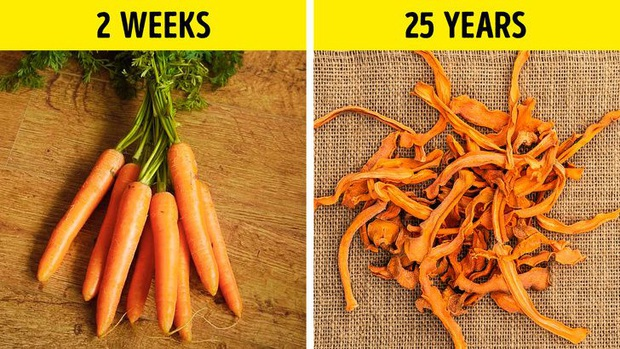 Bạn có thể giữ đồ ăn cả chục năm thay vì chỉ vài ngày theo các mẹo thú vị dưới đây - Ảnh 5.