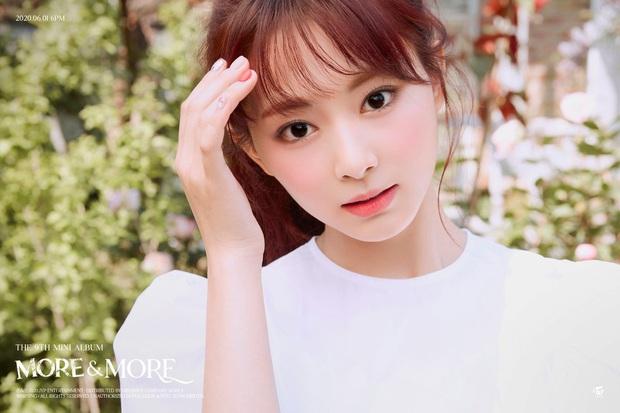 Những pha casting idol nữ lạ lùng nhất Kpop: Suzy được tuyển trong... toilet, trớ trêu nhất trường hợp của BoA và anh trai - Ảnh 5.