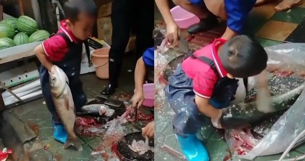 Hình ảnh cậu bé 7 tuổi ngồi giữa chợ sơ chế cá với tay nghề lão luyện gây tranh cãi dữ dội - Ảnh 1.