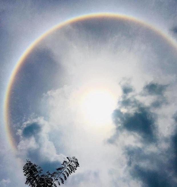 Người dân Sài Gòn, Vũng Tàu và nhiều tỉnh thành thích thú chụp lại hiện tượng quầng sáng bao quanh mặt trời - Ảnh 3.