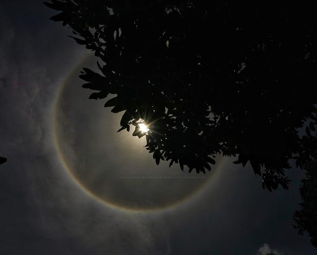 Người dân Sài Gòn, Vũng Tàu và nhiều tỉnh thành thích thú chụp lại hiện tượng quầng sáng bao quanh mặt trời - Ảnh 4.