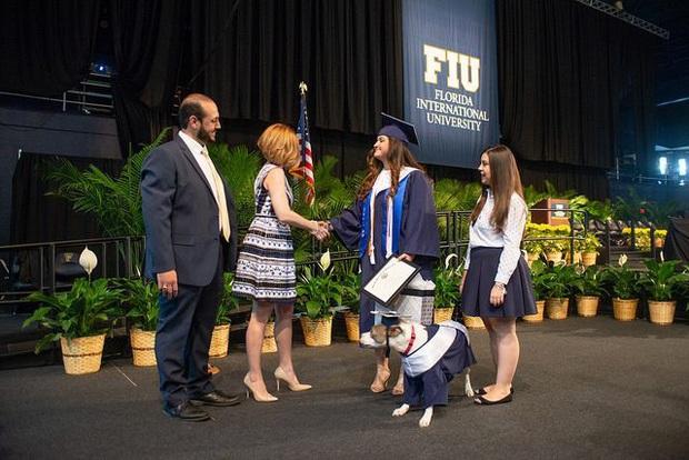 Đi học đều hơn cả sen, chú chó được trường đại học trao bằng cử nhân - Ảnh 1.