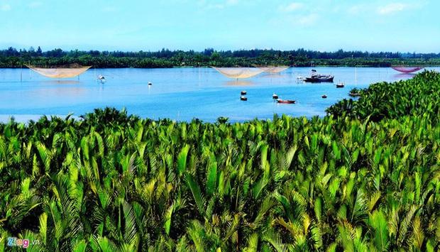 """Ngỡ ngàng """"miền Tây thu nhỏ"""" giữa lòng Hội An: Rừng dừa xanh mướt hơn 100 ha, trải nghiệm từ đánh cá, đập nồi đến màn múa thúng cảm giác mạnh có """"1-0-2"""" - Ảnh 1."""