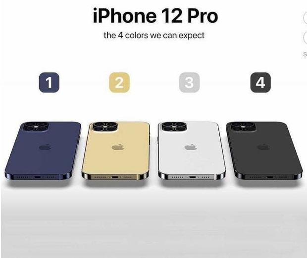 iPhone 12 Pro vừa đấm vừa xoa:  Màn hình siêu mượt siêu mỏng nhưng lại tụt hậu về pin? - Ảnh 2.