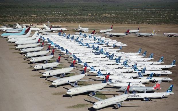 Phi công làm gì để mưu sinh khi đại dịch khiến một nửa máy bay trên thế giới phải đắp chiếu? - Ảnh 1.