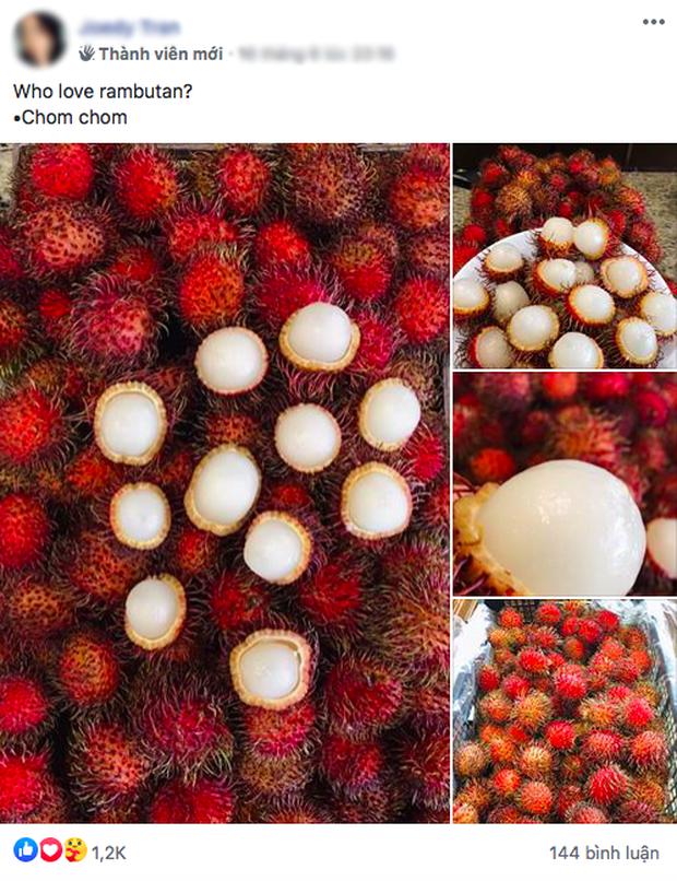 Lần đầu thấy chôm chôm Việt Nam, người nước ngoài phản ứng đầy lạ lẫm: có người còn tưởng là trái cây ngoài hành tinh - Ảnh 1.