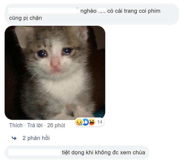 Web phim lậu lớn nhất nhì Việt Nam bỗng dừng hoạt động, năm tháng xem chùa dần kết thúc? - Ảnh 3.