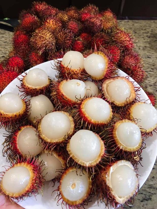 Lần đầu thấy chôm chôm Việt Nam, người nước ngoài phản ứng đầy lạ lẫm: có người còn tưởng là trái cây ngoài hành tinh - Ảnh 3.