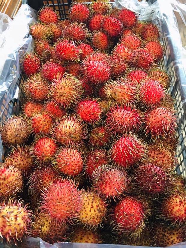 Lần đầu thấy chôm chôm Việt Nam, người nước ngoài phản ứng đầy lạ lẫm: có người còn tưởng là trái cây ngoài hành tinh - Ảnh 2.
