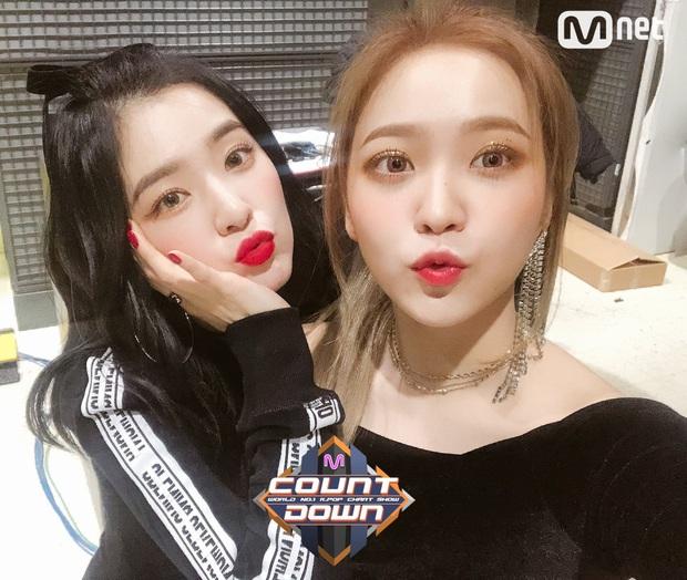"""Loạt tình huống """"bóc trần"""" tính cách thật của nữ thần Irene: Từ buổi hẹn hò với Jennie cho đến """"cú lừa"""" Park Bo Gum trên sóng truyền hình - Ảnh 11."""