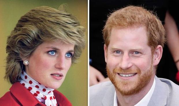 Tiết lộ những nỗi lo của Công nương Diana lúc sinh thời về tương lai Harry: Nhiều năng lượng nhưng dễ cả thèm chóng chán, khác hẳn anh trai - Ảnh 1.