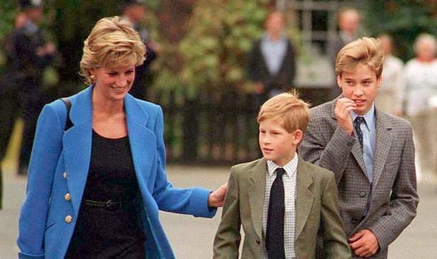 Tiết lộ những nỗi lo của Công nương Diana lúc sinh thời về tương lai Harry: Nhiều năng lượng nhưng dễ cả thèm chóng chán, khác hẳn anh trai - Ảnh 3.