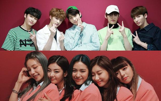 Rộ tin em gái Red Velvet ra mắt và đối đầu TREASURE trong tháng 7, cả 2 được dự đoán ẵm trọn giải tân binh như cặp TXT và ITZY năm 2019 - Ảnh 3.
