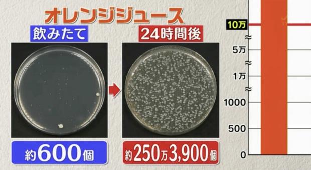 Đài TBS Nhật thử nghiệm 6 loại nước phổ biến sau 24 giờ ở nhiệt độ phòng: Vi khuẩn trong cà phê sữa tăng gấp 8000 lần, trong trà xanh không tăng còn giảm - Ảnh 5.