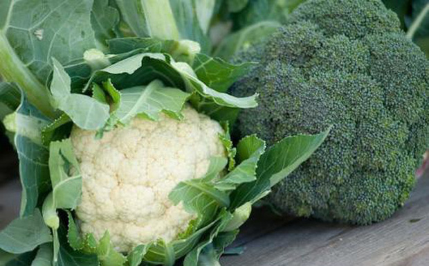 Nhiều loại rau củ quả quen thuộc có cách gọi cực khác nhau giữa 3 miền, đọc một hồi kiểu gì cũng lú lẫn cho xem! - Ảnh 29.