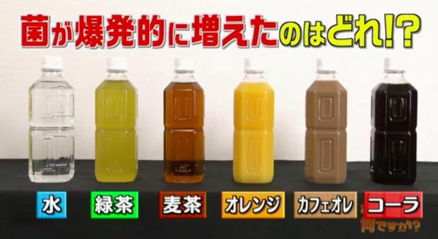 Đài TBS Nhật thử nghiệm 6 loại nước phổ biến sau 24 giờ ở nhiệt độ phòng: Vi khuẩn trong cà phê sữa tăng gấp 8000 lần, trong trà xanh không tăng còn giảm - Ảnh 2.