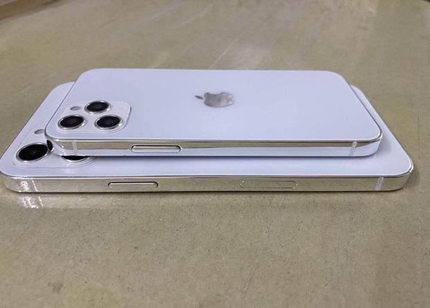 Lộ diện mô hình hoàn thiện của iPhone 12: Phiên bản màn hình khác nhau, khung viền giống iPad Pro - Ảnh 1.
