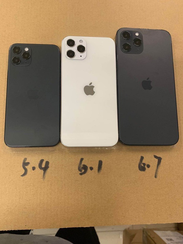 Lộ diện mô hình hoàn thiện của iPhone 12: Phiên bản màn hình khác nhau, khung viền giống iPad Pro - Ảnh 3.