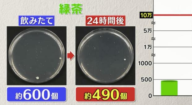 Đài TBS Nhật thử nghiệm 6 loại nước phổ biến sau 24 giờ ở nhiệt độ phòng: Vi khuẩn trong cà phê sữa tăng gấp 8000 lần, trong trà xanh không tăng còn giảm - Ảnh 9.