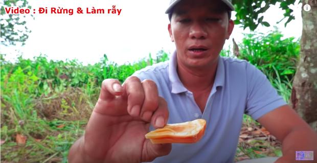 """Thực hư về quả mít vỏ đỏ """"độc nhất vô nhị"""" tại Việt Nam đang khiến cộng đồng mạng tranh cãi: Lẽ nào lại là chiêu trò """"câu view""""? - Ảnh 12."""
