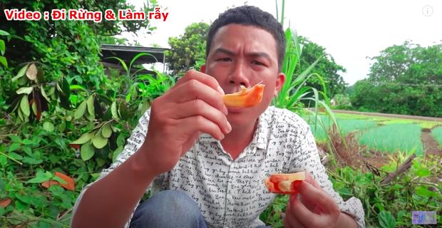 """Thực hư về quả mít vỏ đỏ """"độc nhất vô nhị"""" tại Việt Nam đang khiến cộng đồng mạng tranh cãi: Lẽ nào lại là chiêu trò """"câu view""""? - Ảnh 13."""
