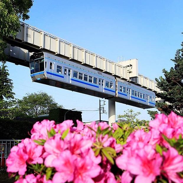 """Không hổ danh """"đất nước ngoài hành tinh"""" trong mắt du khách, Nhật Bản chính là nơi sở hữu đoàn tàu treo ngược dài nhất thế giới hiện nay - Ảnh 7."""