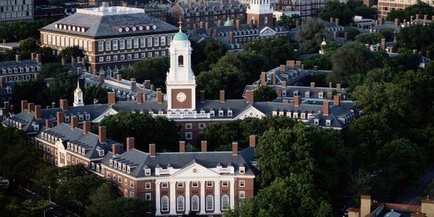 OncoMouse - Con chuột bị cấy gen ung thư một thời làm xáo trộn cả giới nghiên cứu khoa học, khiến ĐH Harvard phải mang tiếng xấu đến tận hôm nay - Ảnh 6.