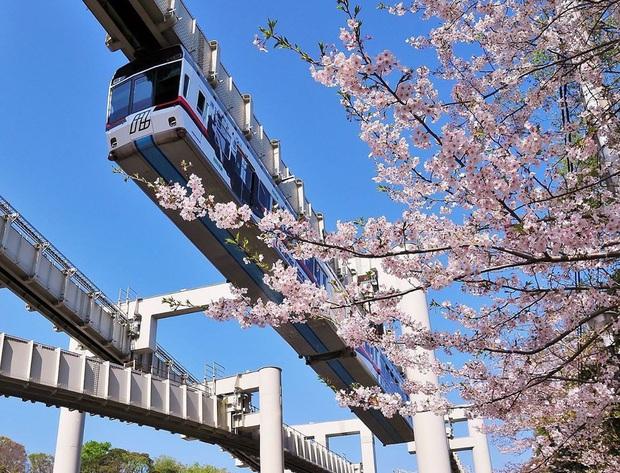 """Không hổ danh """"đất nước ngoài hành tinh"""" trong mắt du khách, Nhật Bản chính là nơi sở hữu đoàn tàu treo ngược dài nhất thế giới hiện nay - Ảnh 2."""