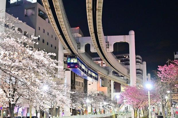 """Không hổ danh """"đất nước ngoài hành tinh"""" trong mắt du khách, Nhật Bản chính là nơi sở hữu đoàn tàu treo ngược dài nhất thế giới hiện nay - Ảnh 14."""