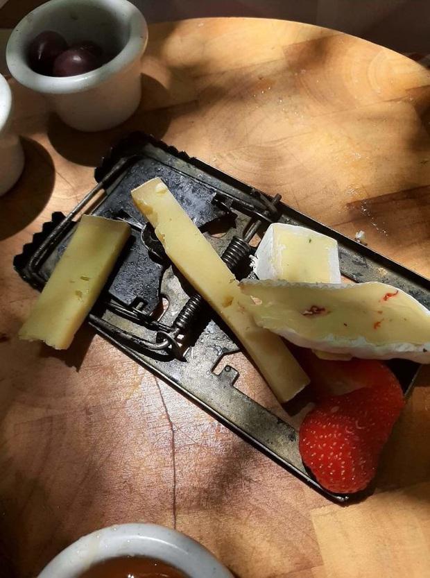 """""""Cạn lời"""" với những cách trình bày món ăn siêu dị của các nhà hàng nước ngoài: Spaghetti đổ ra mặt bàn, có nơi dùng cả giày để đựng thức ăn - Ảnh 15."""