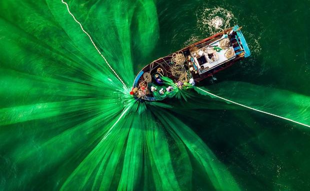 Quảng Ngãi được gọi tên trong vòng chung kết cuộc thi ảnh màu Xanh Thế giới 2020 - Ảnh 12.
