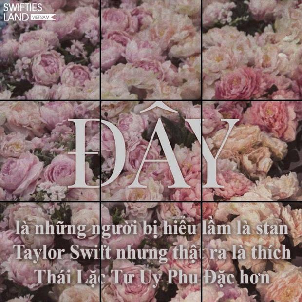 Sơn Tùng M-TP thả thính cả vườn hoa, fan Taylor Swift có ngay nguồn cảm hứng đu trend chế ảnh troll thần tượng - Ảnh 6.