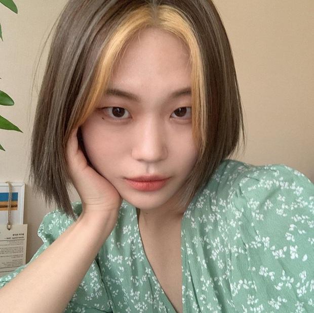 Black Pink vừa ra MV, chị em đã thi nhau làm tóc giống Jisoo, nhuộm tóc như Jennie, ai cũng xinh chất phát hờn - Ảnh 6.