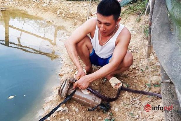 Hạn hán, nắng nóng như thiêu đốt, người dân xứ Nghệ lao đao vì khát - Ảnh 3.