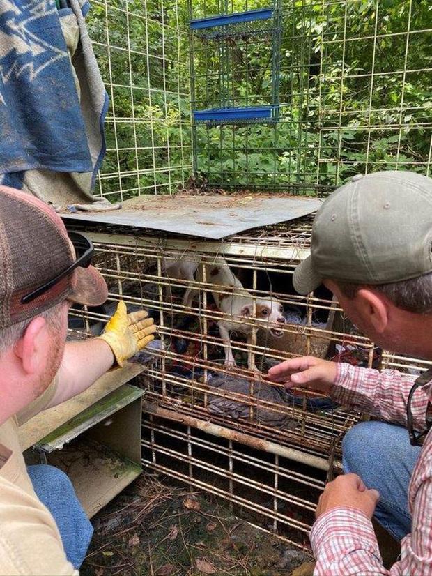 Sốc: Bé trai 18 tháng tuổi bị mẹ và người thân nhốt trong chuồng chó bẩn thỉu với hàng trăm con vật khác từ rắn, chuột đến thỏ, gà - Ảnh 3.
