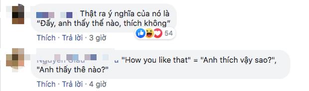 """BLACKPINK đang yên lành gây bão toàn cầu thì bỗng dưng MisThy hỏi """"How You Like That"""" nghĩa là gì, làm netizen lại """"loạn xị ngậu"""" hết cả lên! - Ảnh 6."""